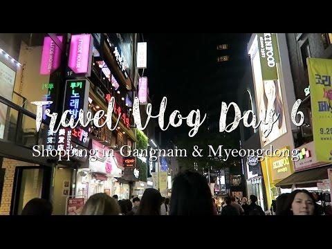 Travel Vlog Day 6 | Shopping in Gangnam & Myeongdong