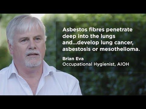 Asbestos basics for duty holders
