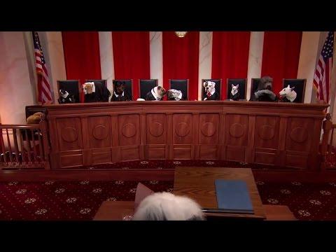 Camreta v. Greene: Oral Argument - March 01, 2011