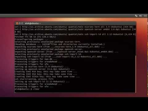 How to install SSH server in ubuntu 12.10