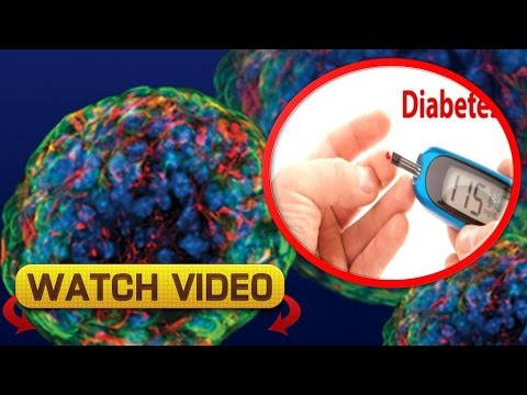 How can Stem Cells Cure Diabetes - How can Stem Cells Help Cure Diabetes