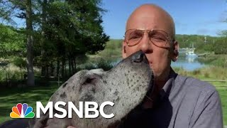 Deadline: White House Gets A Special Canine Guest | Deadline | MSNBC