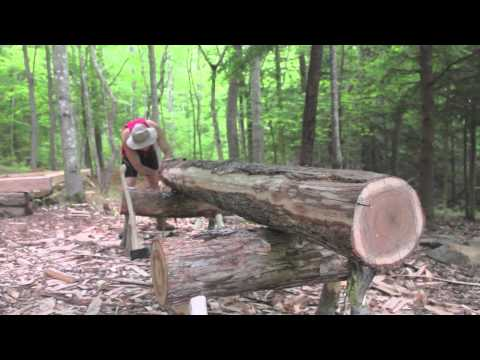 hewing a white oak 6