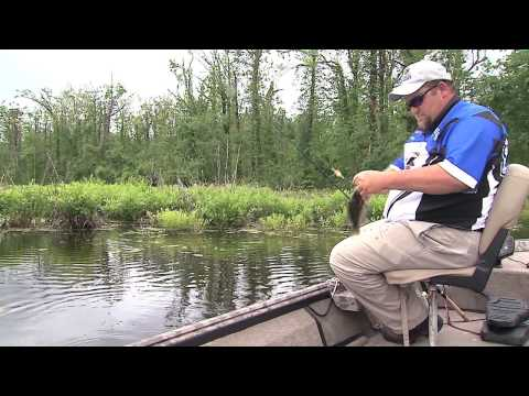 Fishing Reelfoot Lake