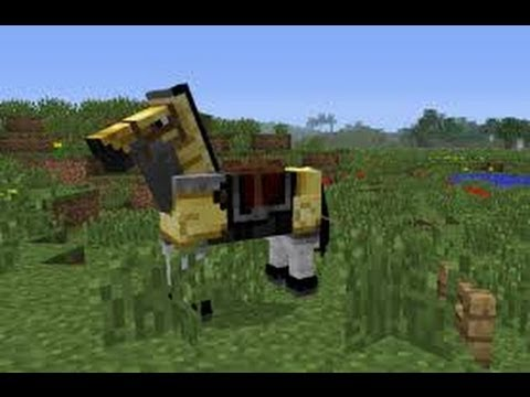 Minecraft - How to make lead,and how to make horse follow you