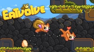 Eatvolve - Flying Snail Squirrel Evolution! - Let