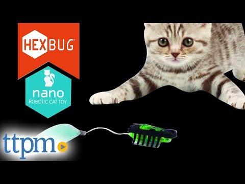 Cat Toys - Nano Robotic Cat Toy from Hexbug