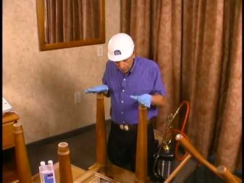 Bed Bug Inspection in Bedroom and Living Room  | Bed Bug Treatment New Jersey