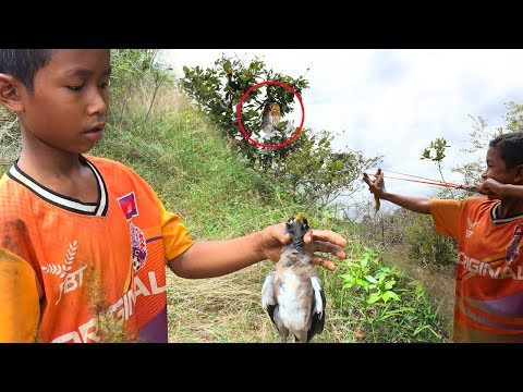 Primitive Slingshot Use To Shoot The Bird By Smart Boy, Slingshot, How To Make And Use