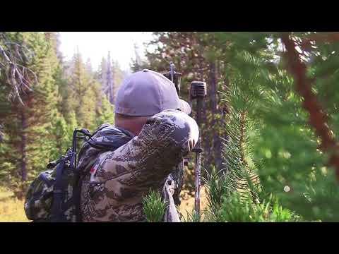 2017 Idaho public land archery elk hunt. 10 yards!