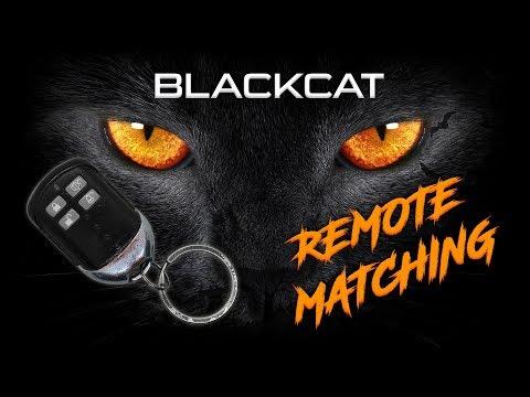 Blackcat Remote Matching