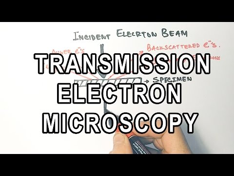 Principle Of Transmission Electron Microscopy