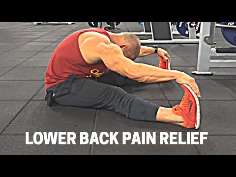Lower Back Pain Relief ONE MOVE