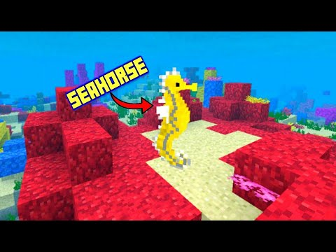 Seahorse in Minecraft pocket edition 1.4 !!