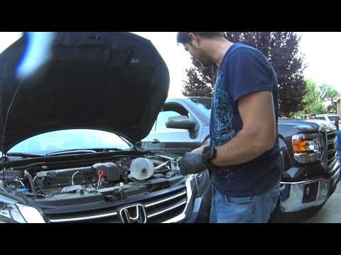 Honda Accord 2013 + Manual Transmission Fluid Change