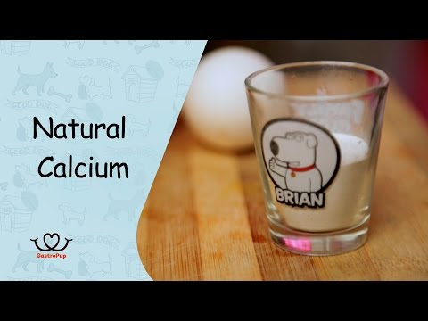 How To Make Natural Calcium  For Your Dog | Gastro Pup | Healthy Pet Treat