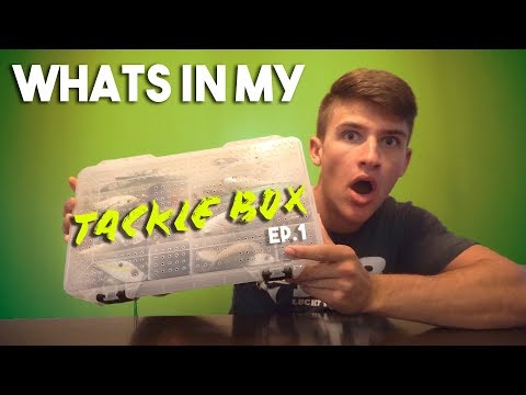 What's In My TACKLE BOX ! (Travel Fishing Box)