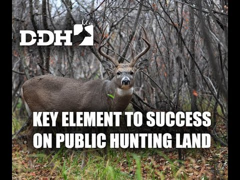 Key Element to Success on Public Hunting Land | John Eberhart @deerhuntingmag