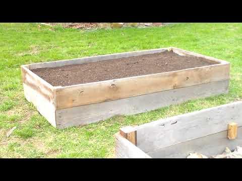 Homestead Garden Update and Wild Turkeys!!
