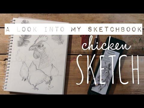 Sketchbook Work in Progress: Chicken Sketch