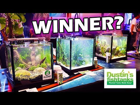 AQUARIUM AQUASCAPING CONTEST: And The Winner Is?