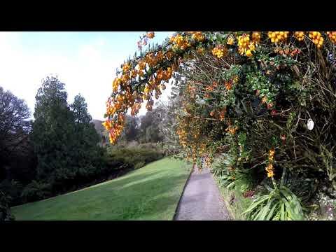 Trebah Gardens 3rd April 2018