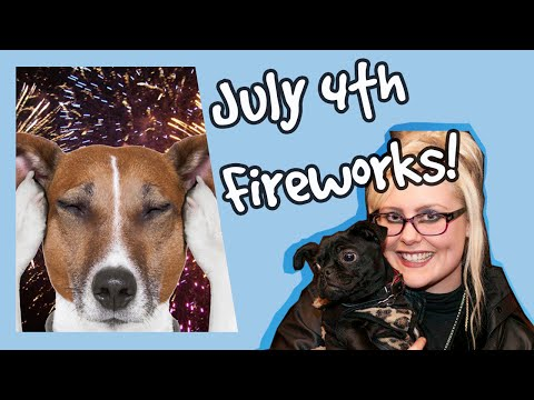 How to Help Dogs Scared of Fireworks! Top 10 Tips for Dogs on July 4th! Plus Competition! 🐶🎆