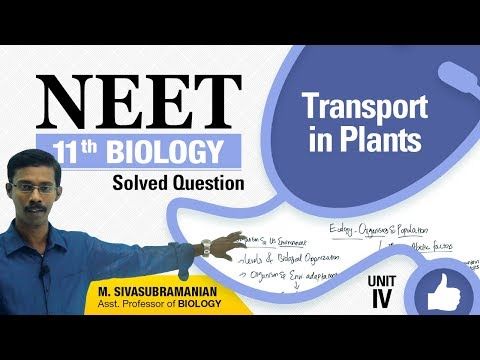 NEET 11th Biology || Transport in Plants || Solved Multiple Choice Question|| Unit-IV