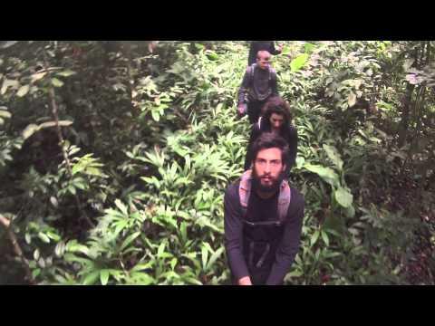 Amazon Rainforest (Peru) GoPro