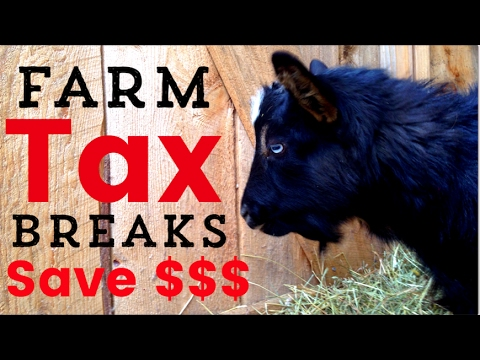 How We Save Money ($1000+) On Taxes By Farming