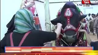 People Rush To Cattle Market In Karachi