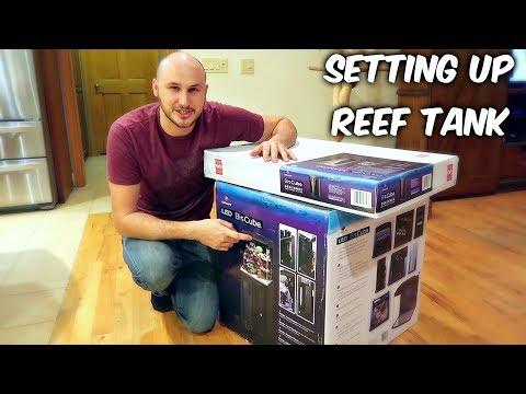 Setting Up Reef Tank