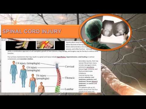 Care of Patients with Spinal Cord Disorders