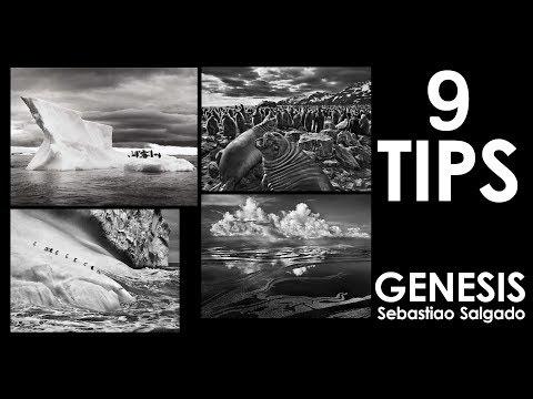 9 Photography Tips I Learned from Sebastiao Salgado Genesis Book