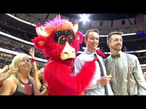 Gay marriage proposal at a Chicago Bulls game