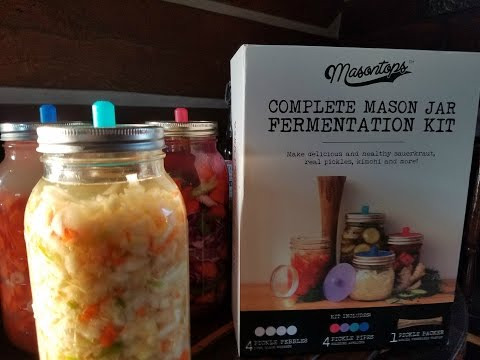FERMENTING FOR DUMMIES! SO EASY