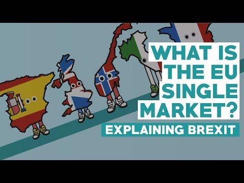 European Single Market - Explaining Brexit