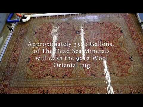 Cleaning dog stains and odor from silk wool rug