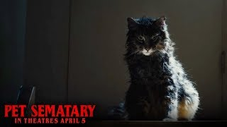 Download Pet Sematary (2019)- Dead Digital - Paramount Pictures Video