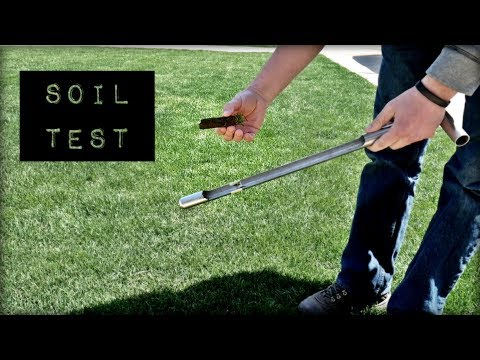 How To Do a Soil Test On Your Lawn - Soil Savvy Test Kit