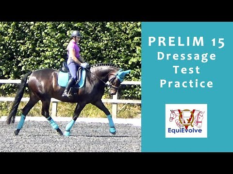Prelim 15 Dressage Test Learning Tool