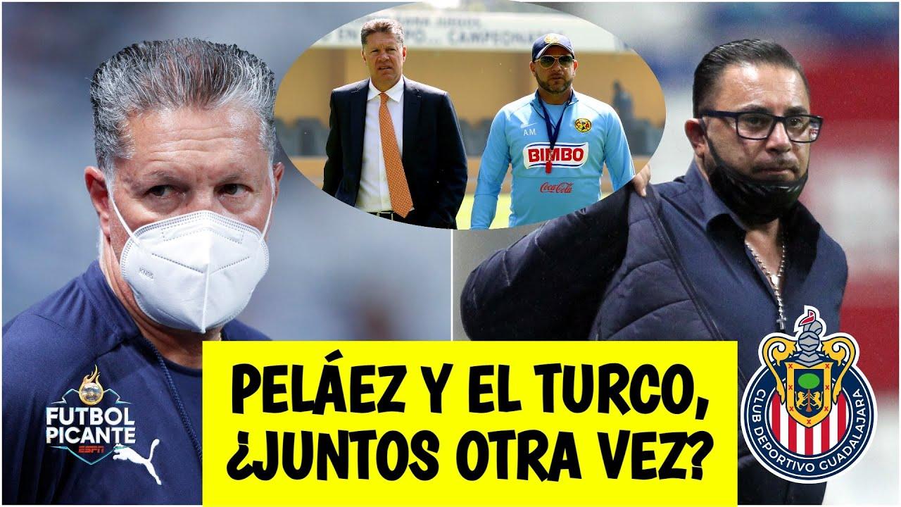 BOMBAZO Peláez ADMITE que Antonio Turco Mohamed TIENE VENTAJA para llegar a Chivas   Futbol Picante