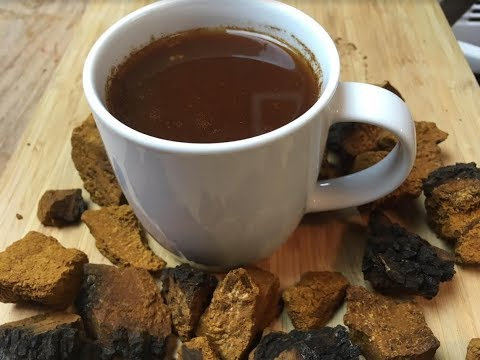 How To Make Chaga Mushroom Tea