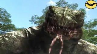 Top 5 Prehistoric Predators that would make dinosaurs run.
