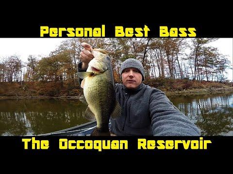 Personal Best Bass | Occoquan Reservoir