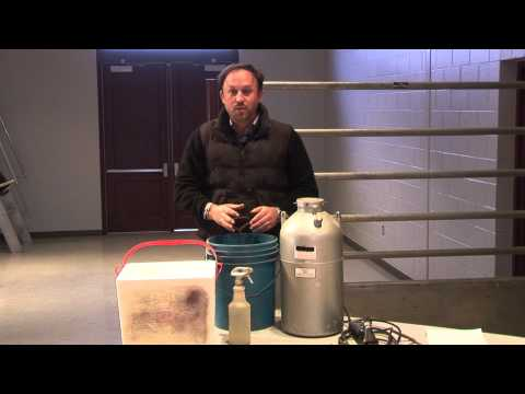 10 Liquid Nitrogen Dry Ice and Freeze Branding