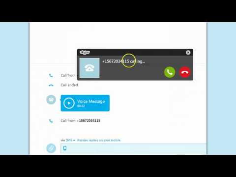 How to make a Skype Call From Google Voice