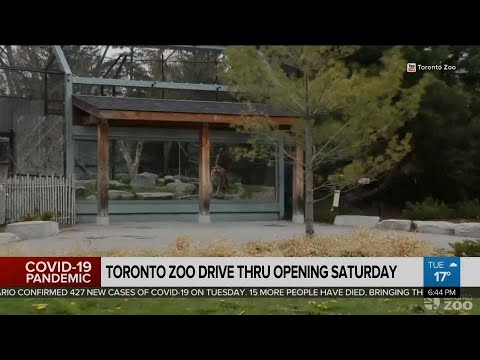 Toronto Zoo to open drive-in service Saturday