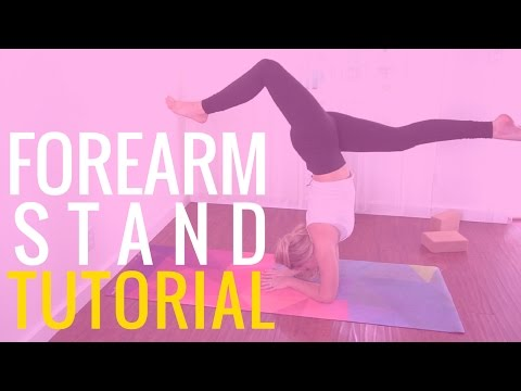 Forearm Stand Tutorial   Yoga Forearm Stand for Beginners