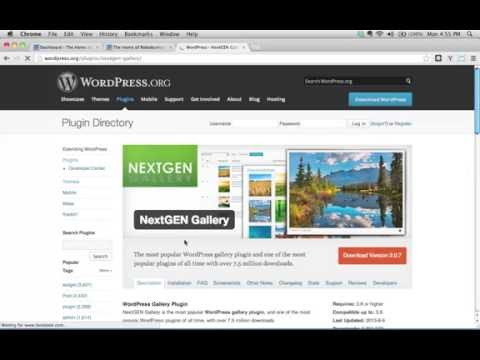 What are Plugins in WordPress, and how do I use them?